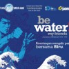 2012 Campaign – Be Water